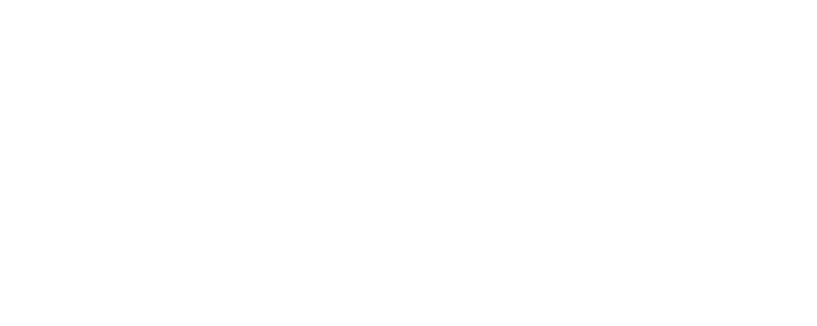 DEIN NETZWERKER_Logo